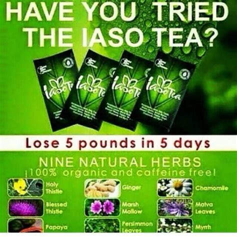 Detox In 5 Days by 74 Best Organic Healthy Detox To Lose 10lbs In 10 Days