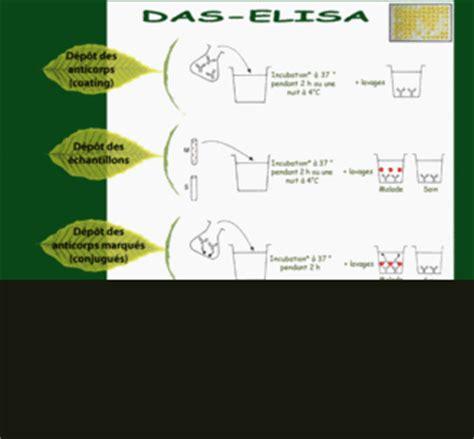 Tas Eliza les tests s 233 rologiques portail d information sur l agriculture et la biodiversit 233 dans l oc 233 an