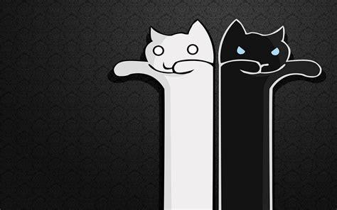 imagenes a blanco y negro de miedo gatos blanco y negro im 225 genes de miedo y fotos de terror