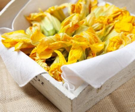 frittelle di fiori di zucca bimby frittelle di fiori di zucca la ricetta per preparare le