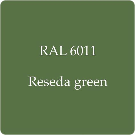 ral 6011 cellulose budget industrial classic paint reseda green 2 5l w strainer ebay
