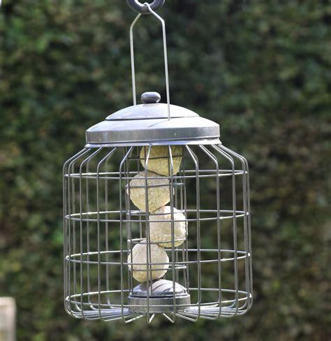 heavy duty squirrel proof bird feeder buy online at