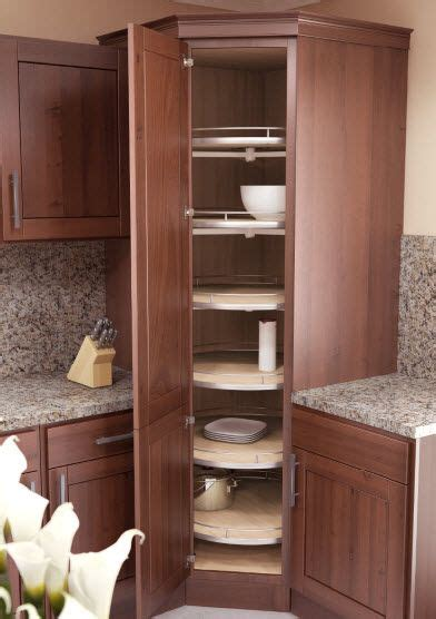 Tall Corner Kitchen Cabinet 25 Best Ideas About Corner Cabinet Kitchen On Pinterest