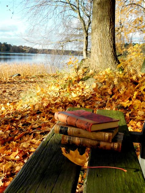 falls a novel late autumn reading list erin zaleski