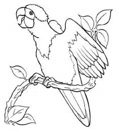 printable coloring pictures free printable parrot coloring pages for az