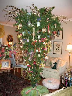 why is tree decorated 1000 images about trees on