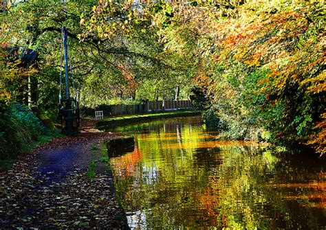 autumn shortlisted for the autumn canal flickr photo sharing
