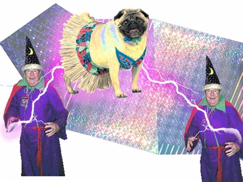 wizard pug pug and wizard gif gif by nyxlexine photobucket