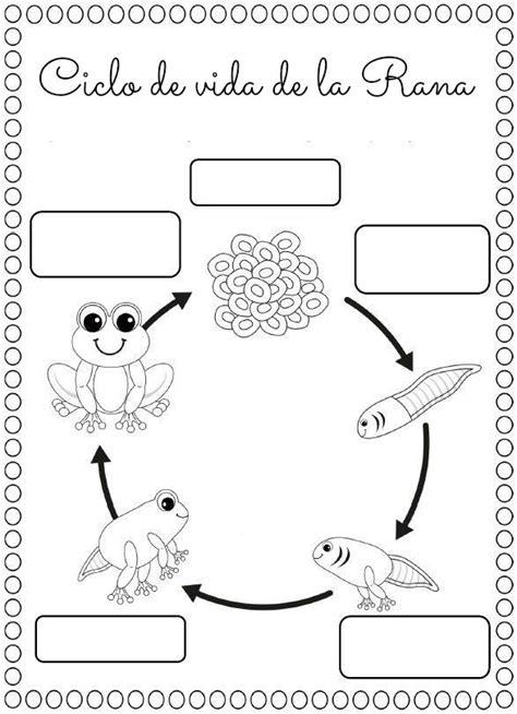 20 worksheets for adhd v 253 sledek obr the 25 best seres vivos ideas on los seres