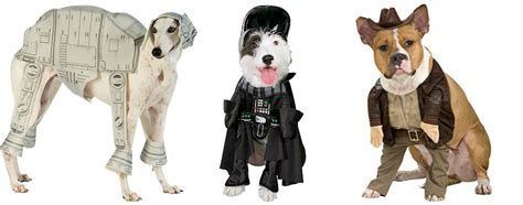 halloween themes with dogs dog halloween costumes
