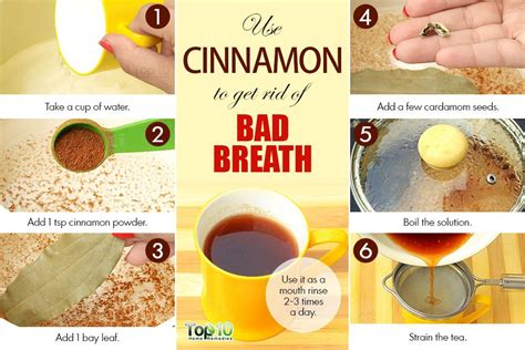 home remedies for bad breath top 10 home remedies