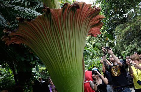 Top 10 Botanical Gardens Top 10 U S Botanical Gardens Ct Now