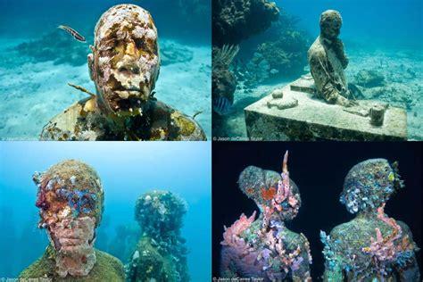 imagenes increibles e insolitas de la naturaleza imagenes quenoteduerman