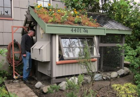 seattle chicken coop and farm tour tacoma
