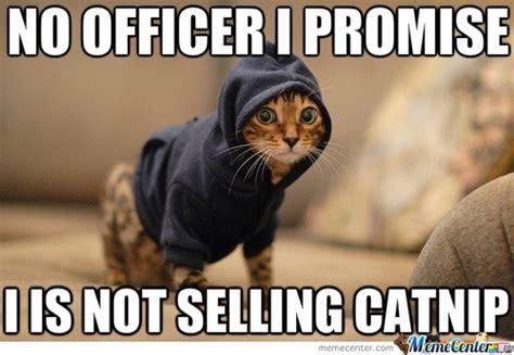 Funny Drug Memes - drug dealer