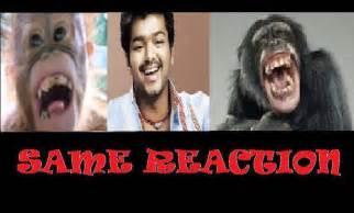 actor vijay comedy photos vijay comedy photos 4 187 photo art inc
