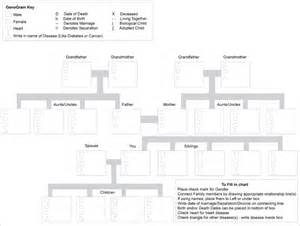 free genogram template 31 genogram templates free word pdf psd documents