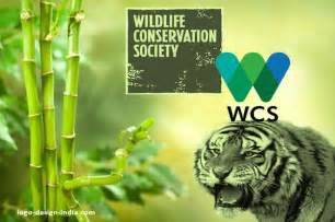 wildlife conservation society wcs wildlife protection society of india junglekey in image