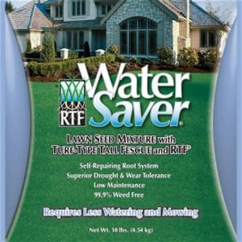 water saver 10 lb fescue grass seed 11110 the home