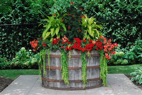 Plant Pot Ideas For The Patio by 10 Stunning Flower Pot Ideas For Your Home