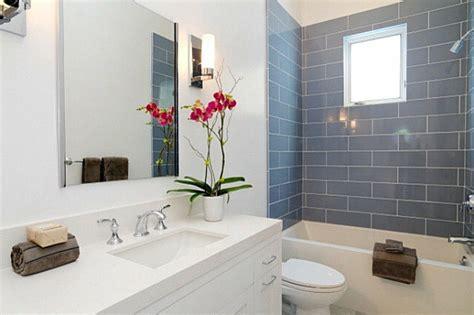 Gelas Cucing Lusin By Duniahaji wohnideen gr 252 ne zimmerpflanzen im badezimmer