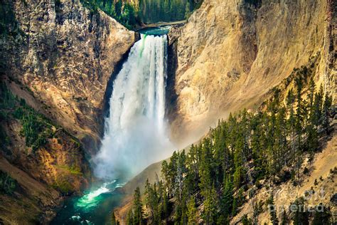 Down Duvet Cover Yellowstone Lower Waterfalls Photograph By Robert Bales