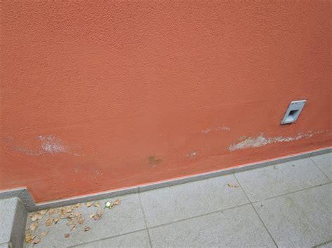 muri bagnati umidit 224 e muri si scrostano umidit 224 muri