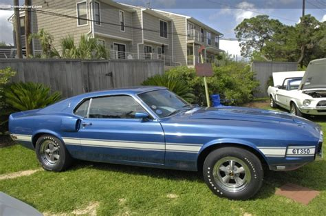 69 shelby mustang for sale 1969 shelby mustang gt 350 image