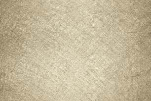 Teddy Bear Upholstery Beige Fabric Texture Picture Free Photograph Photos