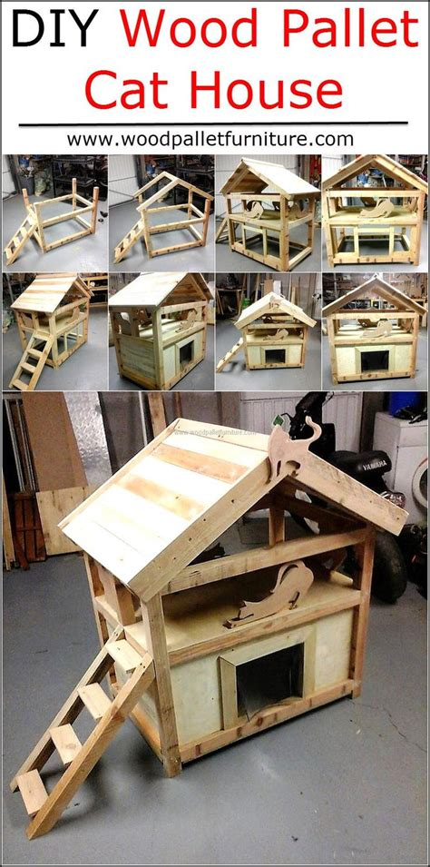 biggest house cat you can buy best 25 cat houses ideas on pinterest cat house diy cat home and diy cat toys