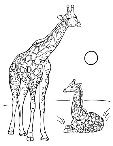 Giraffe Coloring Pages Pdf | giraffes free colouring pages