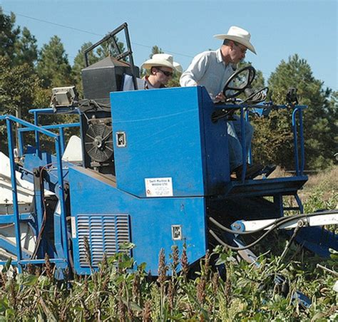 texas commodities increasing agricultural commodity prices causing some