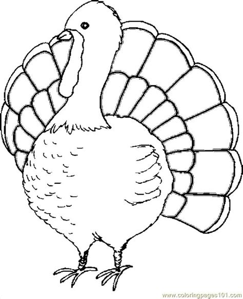 coloring page thanksgiving turkey coloring pages turkey 12 holidays gt thanksgiving day