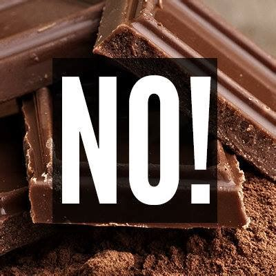 why chocolate is bad for dogs the five most frequently asked questions answered elm animal hospital
