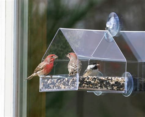 duncraft window chalet bird feeder window feeders are