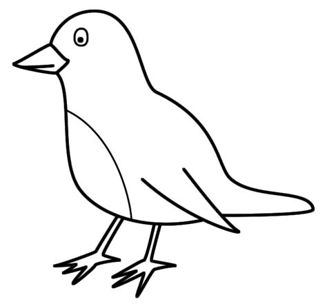 printable coloring pages of birds printable bird coloring pages coloring me