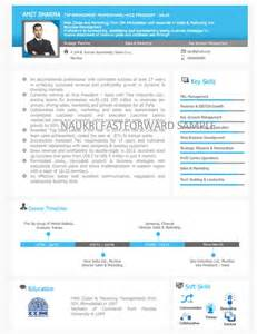 Visual Resume Exles by Professional Resume For Senior Software Engineer