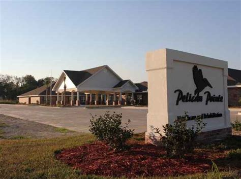 home delivery pelican healthcare pelican point nursing home avie home