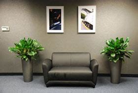 comfort keepers corporate office plant installation maintenance