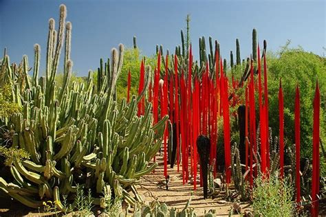 Top 10 Must To Visit Tourist Attractions In Phoenix Arizona Botanical Gardens