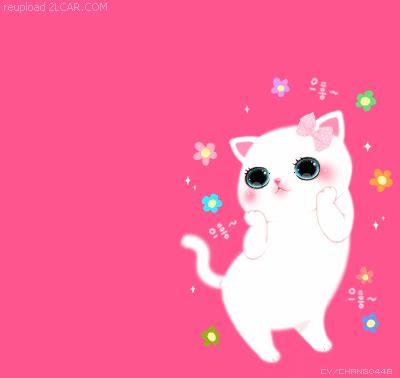 wallpaper kucing bergerak untuk pc lihat gambar animasi kartun korea kucing queeniz diary