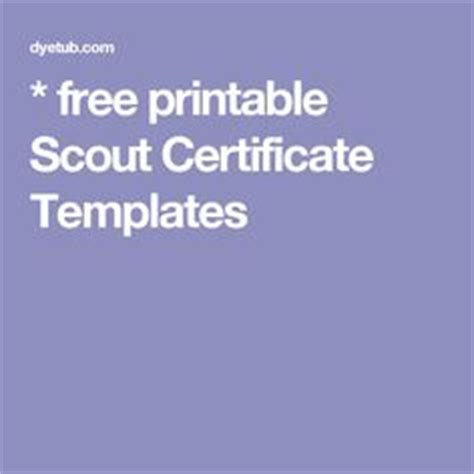 scout certificate templates thanks for volunteering volunteer thank you certificate