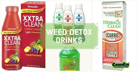 Marijuana Detox Drinks by 5 Detox Drinks For That Work Cannabistutorials