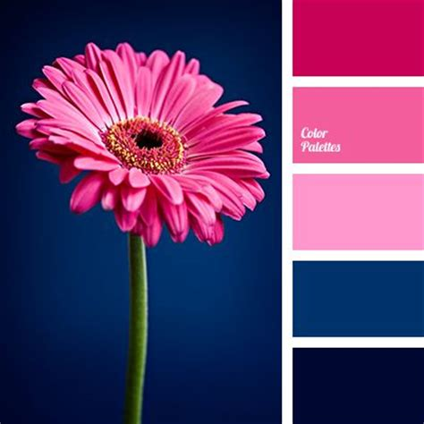 pink color combinations best 25 pink color palettes ideas on pinterest peach