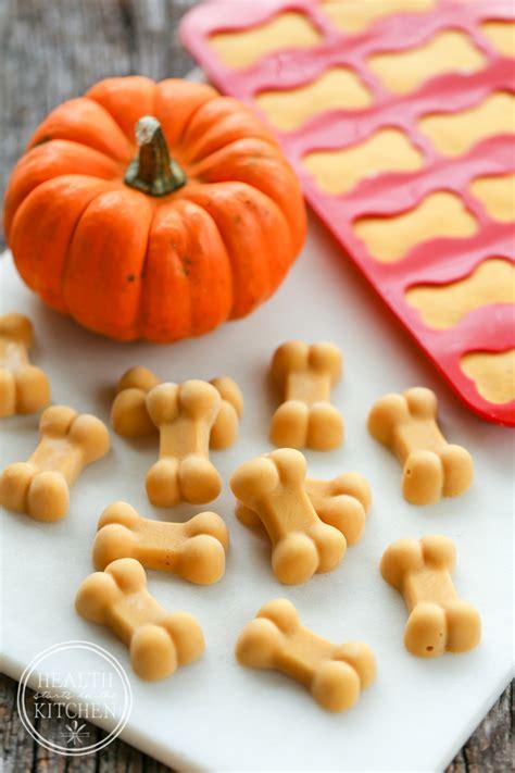 pumpkin treats for dogs frosty pumpkin treats for fall itchy skin