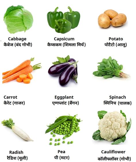 d vegetables name vegetables names to www pixshark