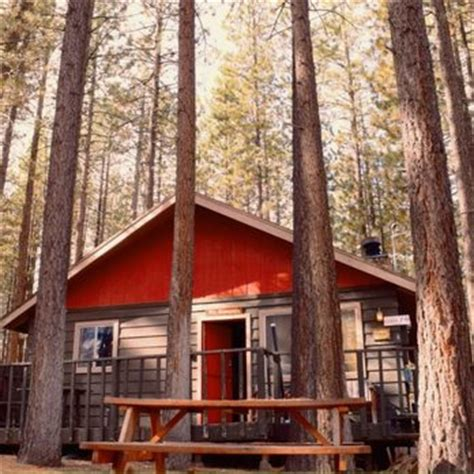 Big Cabins 4 Less by Cabins4less 235 Photos 209 Reviews Hotels 39166