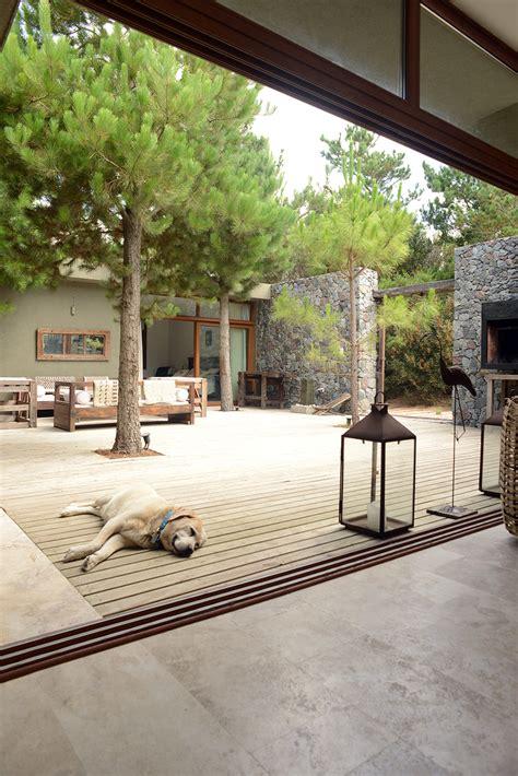 patio sol patio al sol revista tigris