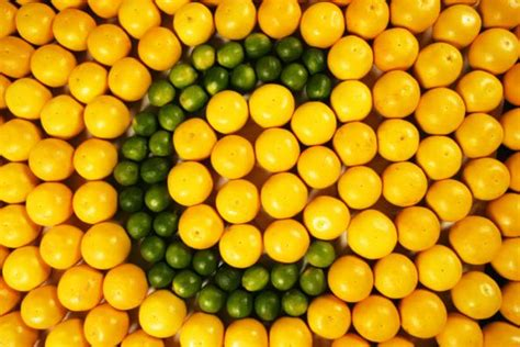 carenza di vitamina c segni e sintomi