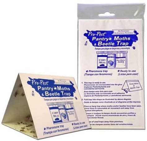 Pantry Pest Trap by How To Get Rid Of Carpet Beetles Top 7 Best Sprays Traps